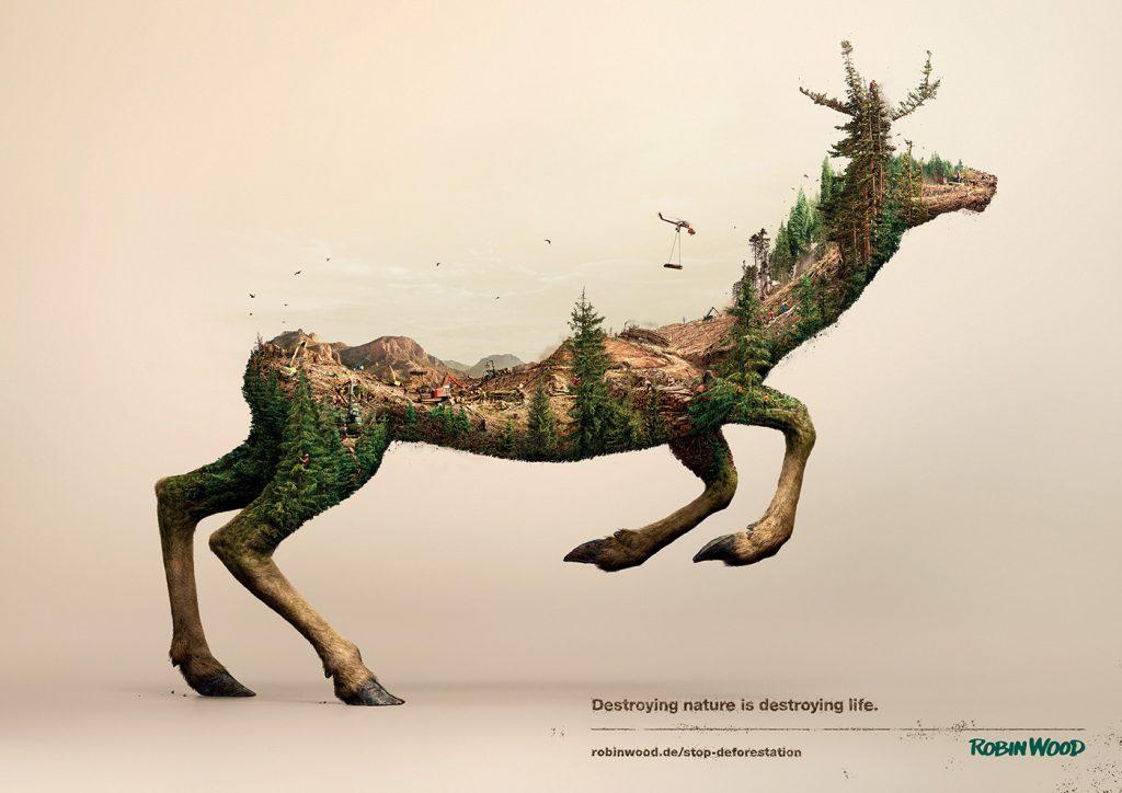 Annonceur - robin wood - 03